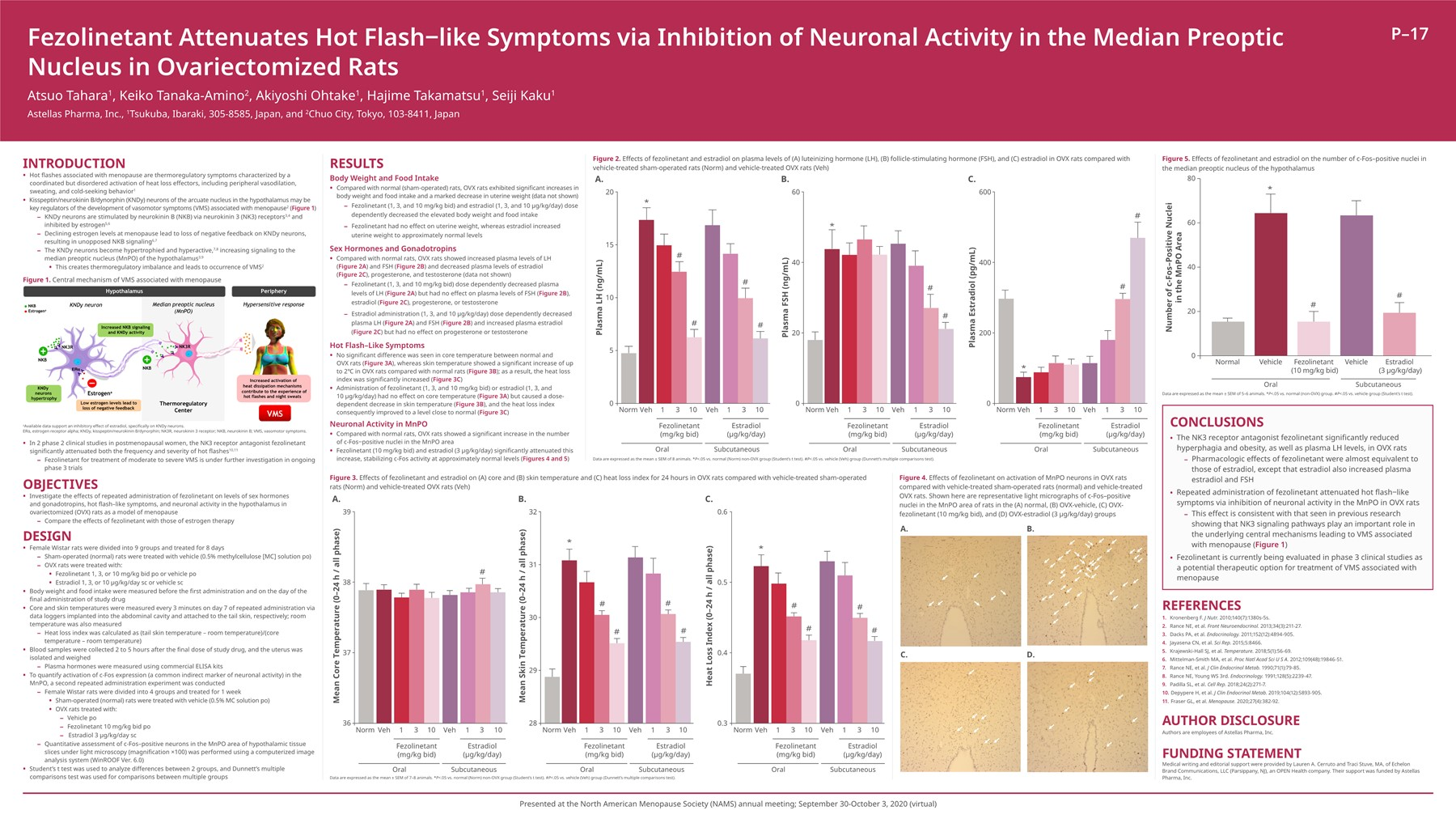 Fezolinetant Attenuates Hot Flash-like Symptoms via Inhibition of Neuronal Activity in the Median Preoptic Nucleus in Ovariectomized Rats